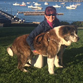 Karen, Dog Sitters in Beverly, MA