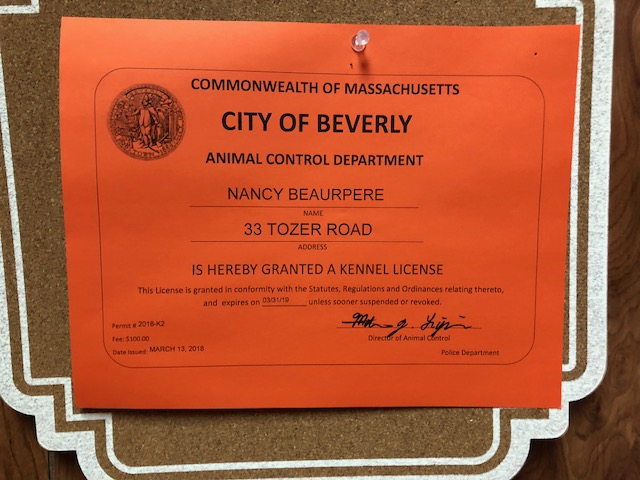 City of Beverly Kenneling and Dog Daycare License