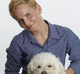 Nancy DeFazio owner of Dingo's Dogsitting in Beverly MA