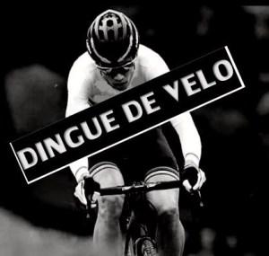 logo_dinguedevelo