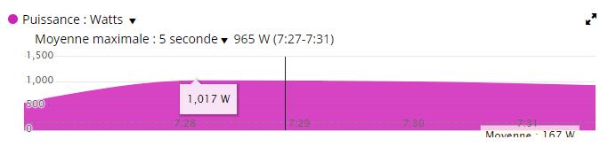 Dingue de vélo - entrainement Sprints - Capture Garmin 1017 Watts