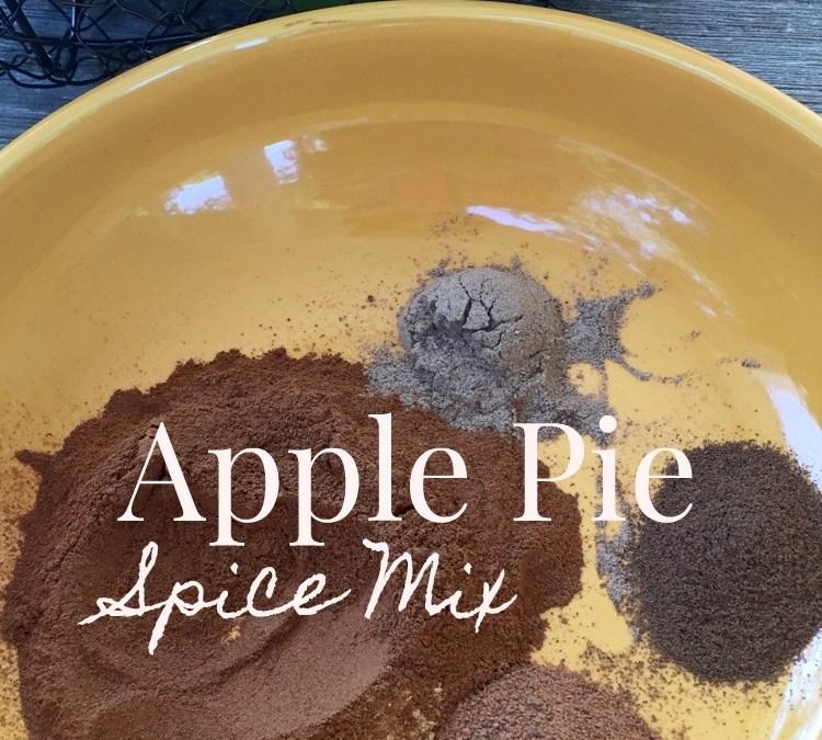 Kitchen Basics: Homemade Apple Pie Spice Mix