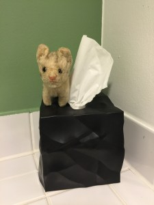 Frankie liked the tissue box in the bathroom
