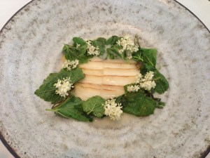 White asparagus, black currant leaves and barley