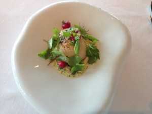 Scallop in juniper aroma with pckled pine, berries and flowers