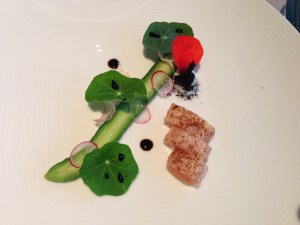 Wild salmon, smoke, cucumber and yougurt