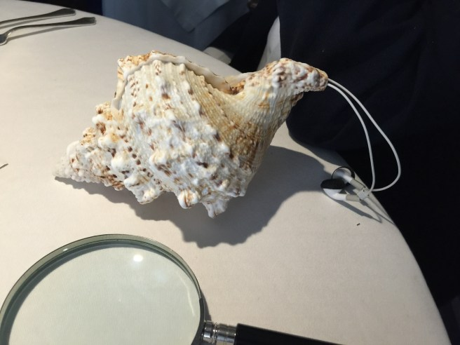 seashell head set to hear the waves for the next course