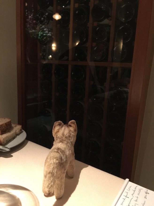 Frankie keeps watch for friends