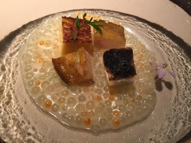 Abalone, tapioca with radish and parmesan