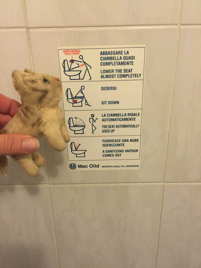 Frankie liked the toilet instructions for sanitized seats in the bathroom