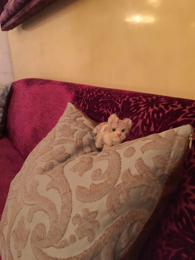 Frankie enjoyed the plush cushions on the bench seat