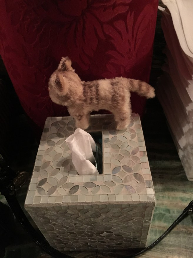 Frankie found a fancy tissue box