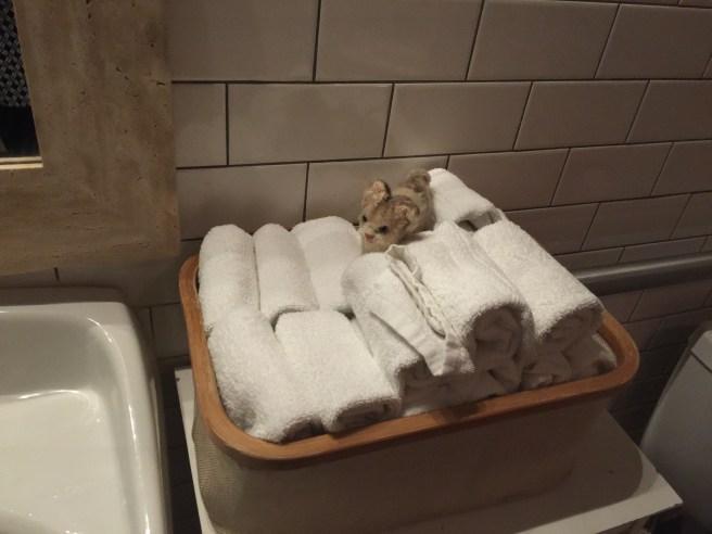 Frankie likes a cloth hand towel