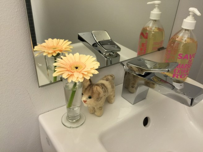 Frankie found a flower in the bathroom