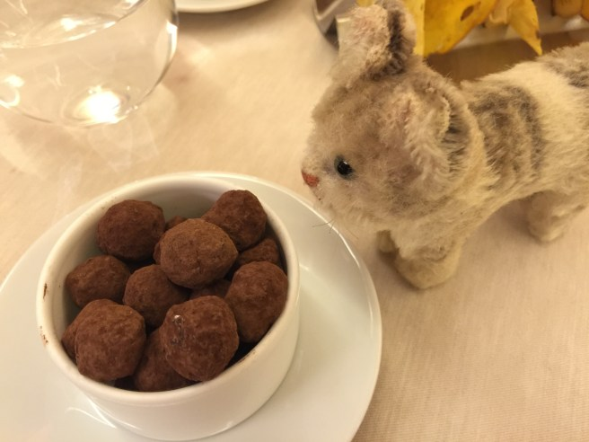 Frankie inspected the chocolate coated hazelnuts