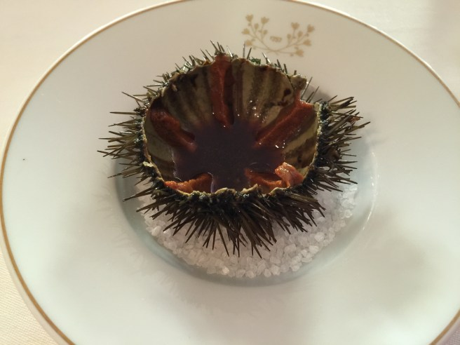 Sea urchins, meat jus and lemon