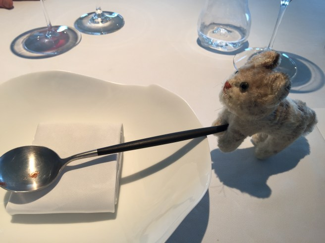 Frankie tried to seesaw on the spoon
