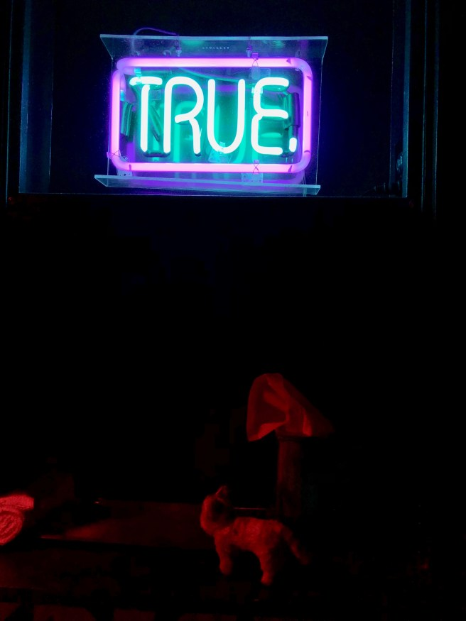 Frankie thought the neon was a dramatic affect for a bathroom