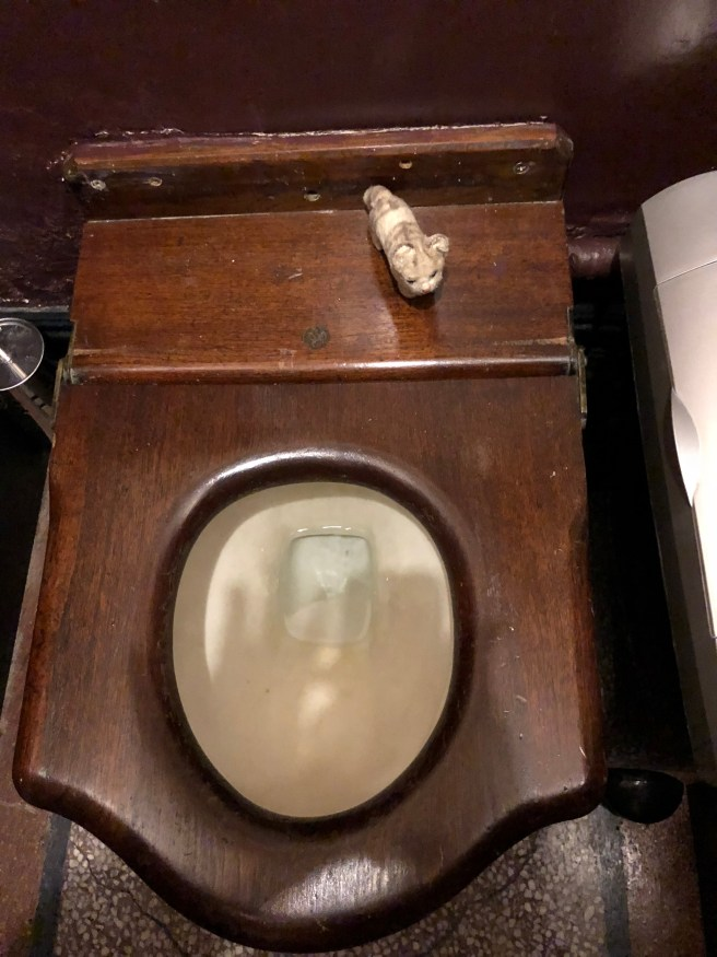 Frankie was fascinated with the wooden toilet seat