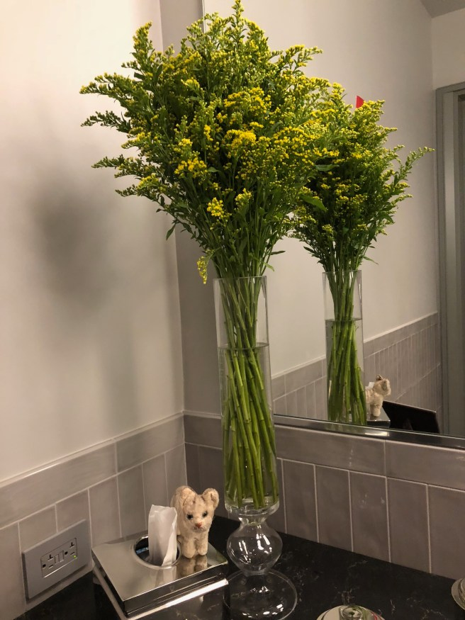 Frankie posed witht the bathroom flowers