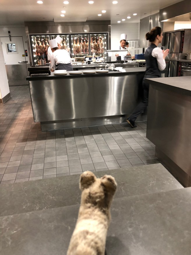 Frankie watched the action