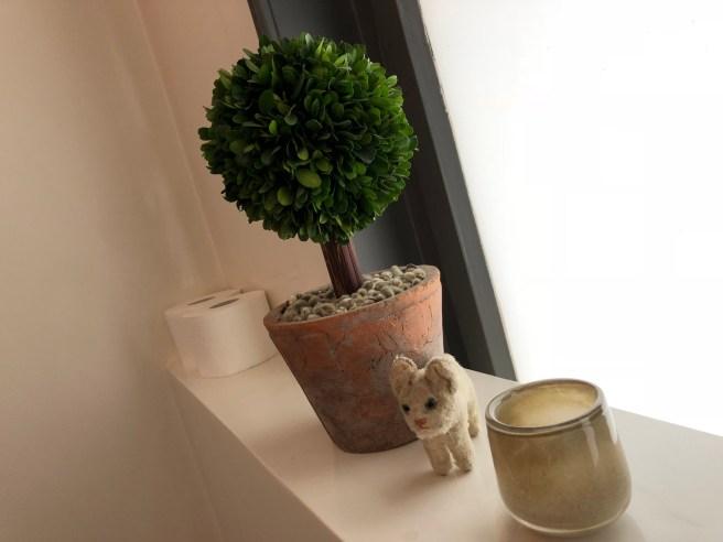 Frankie found an interesting plant