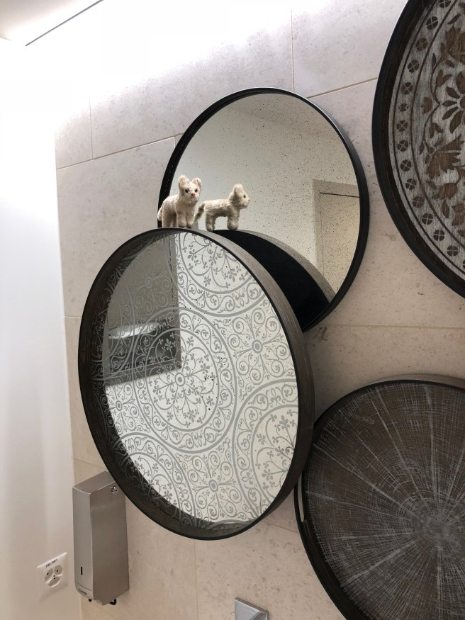 Frankie explored the mirrors