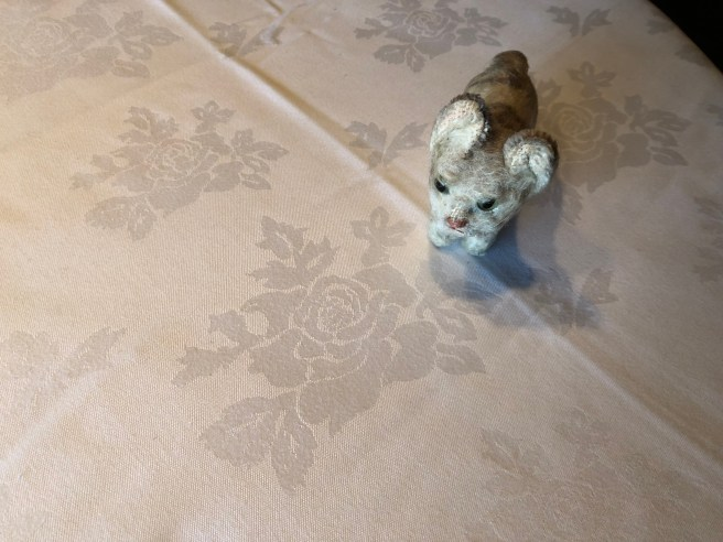 Frankie liked the table cloth