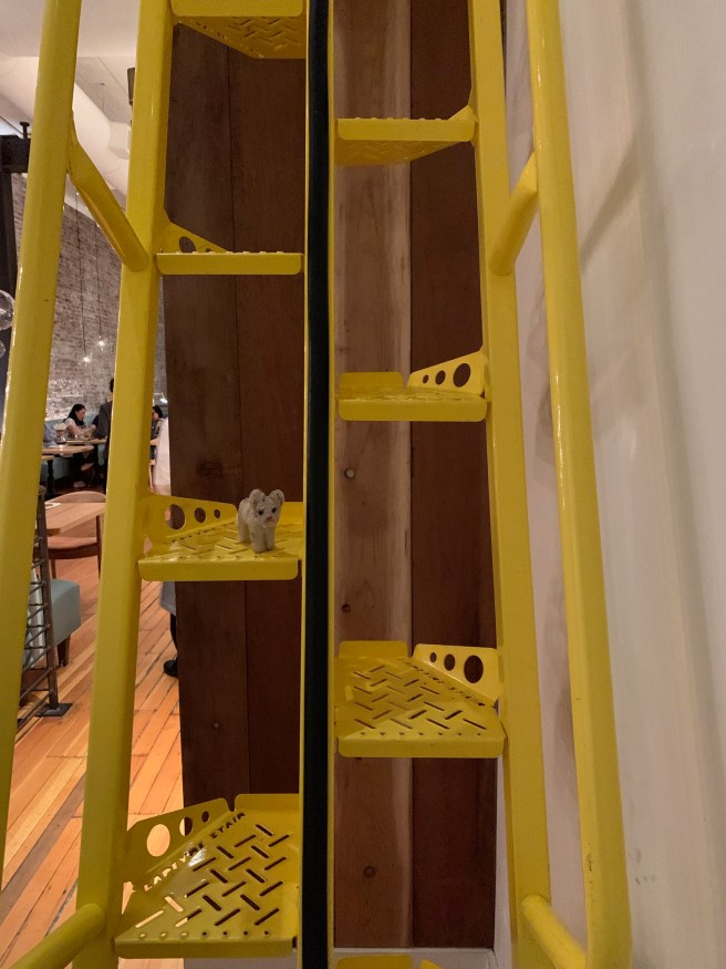 Frankie climbed the ladder to upstairs