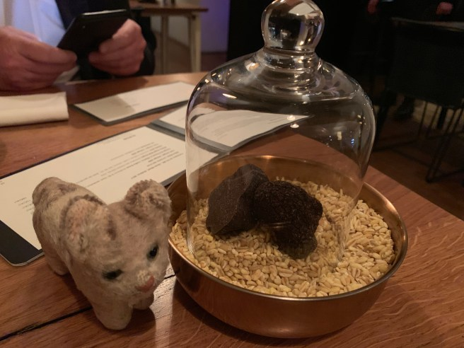 Frankie sniffed at the truffles on the table