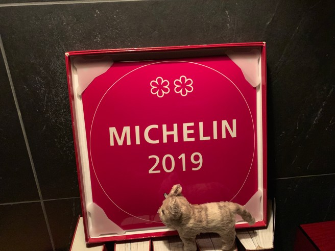 Frankie found the Michelin sign
