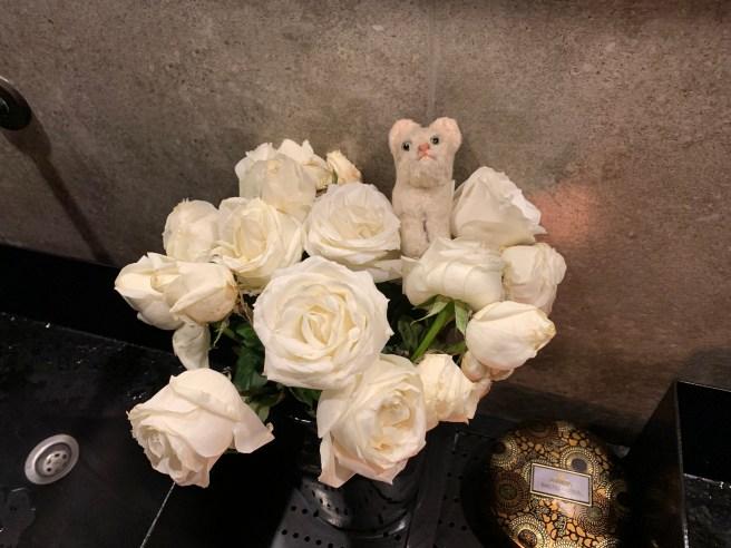 Frankie likes roses