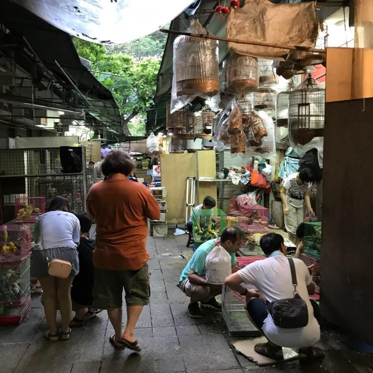 Yuen Po Street Bird Market, Hong Kong
