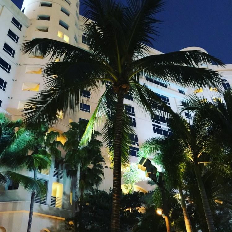 Seminole Hard Rock Casino & Hotel by Night