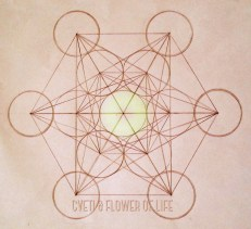 Cube of Metatron 2
