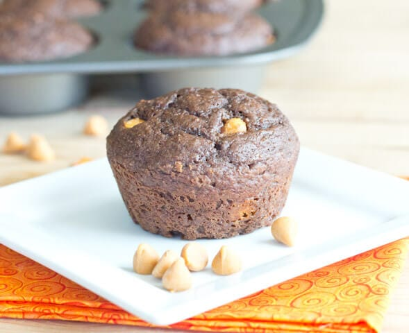Chocolate Applesauce Muffins