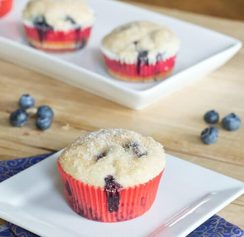 Blueberry Muffin - A classic blueberry muffin with a cinnamon and sugar topping. This is the best blueberry muffin recipe I have ever tried!
