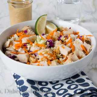 Thai Chicken Salad {Dinners, Dishes, and Desserts}