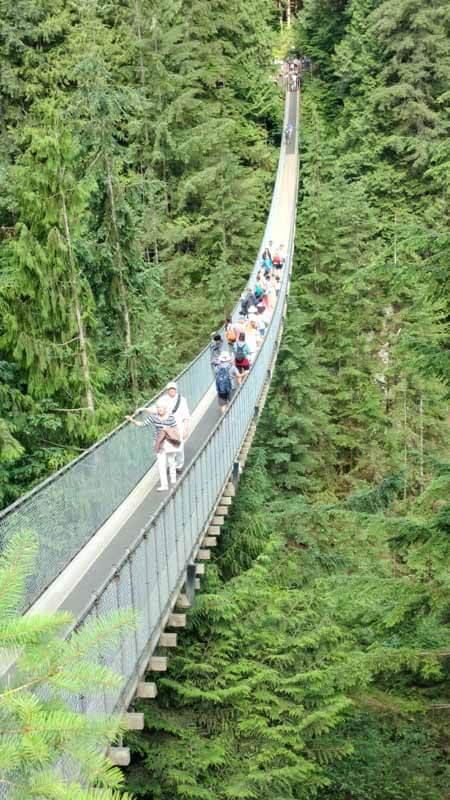people on a suspension birdge