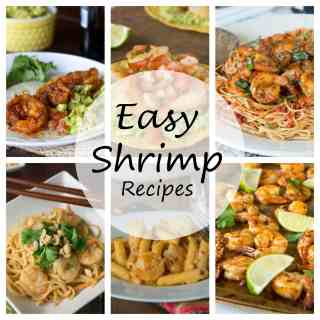 27 Easy Shrimp Recipes - make more shrimp for dinner at home. A round up of 27 of my favorite easy shrimp recipes!
