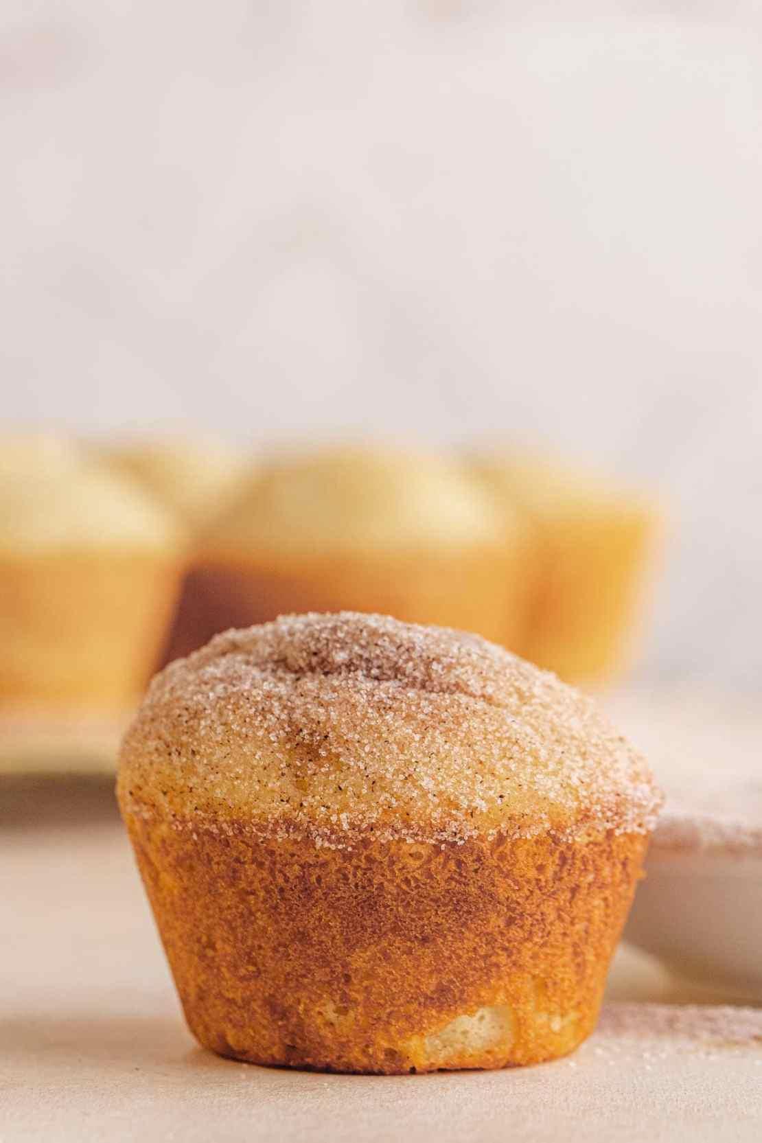 Close up of Mini Doughnut Muffin