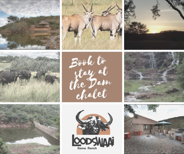 Loodswaai Game Ranch featured photo 768x644