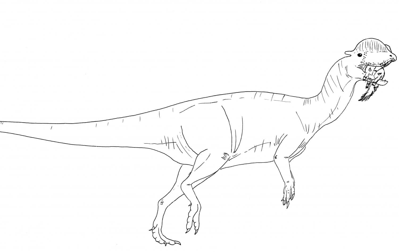 The Real Dilophosaurus