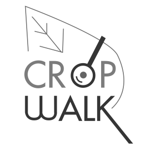 cropwalk-01_grey_scale