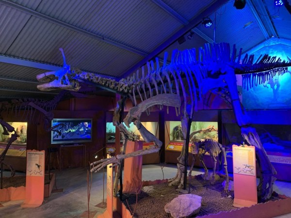 dinosaur-world-dino-shed-12