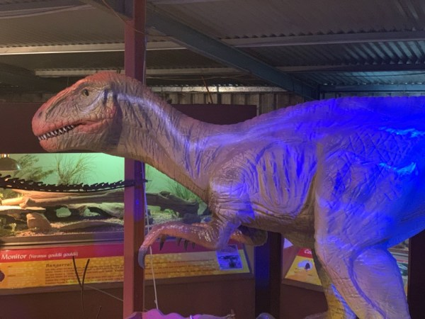 dinosaur-world-dino-shed-17