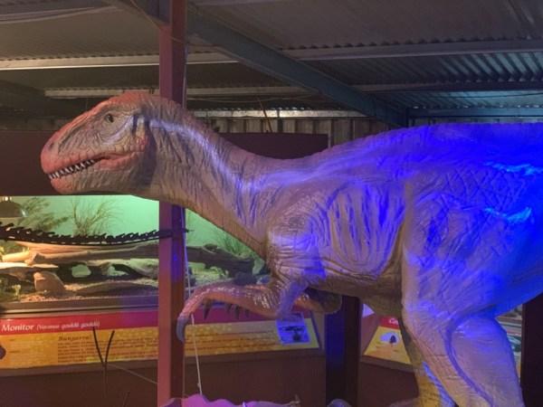 dinosaur-world-dino-shed-17