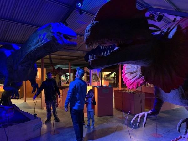 dinosaur-world-dino-shed-4