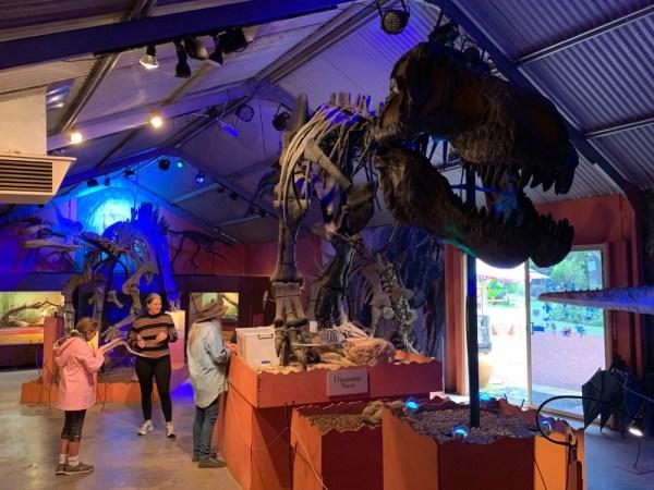 dinosaur-world-dino-shed-6