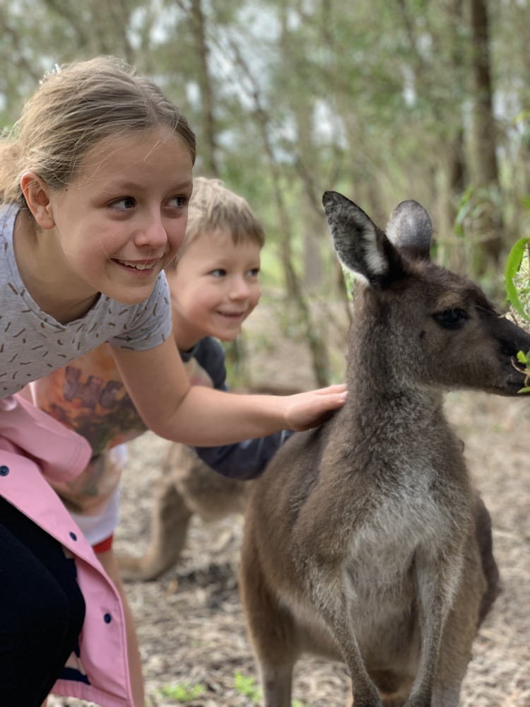 dinosaur-world-kangaroo-park-18